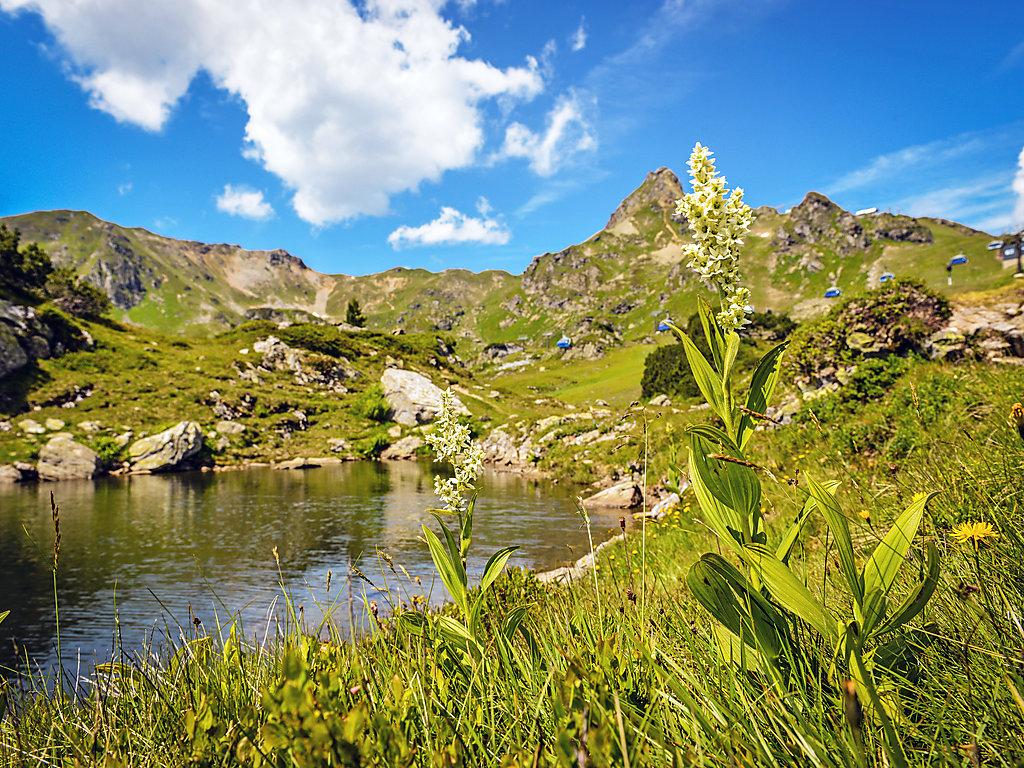 Ferienwohnung Mountain Vita