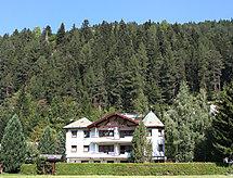 Pettneu am Arlberg - Lägenheter Diana