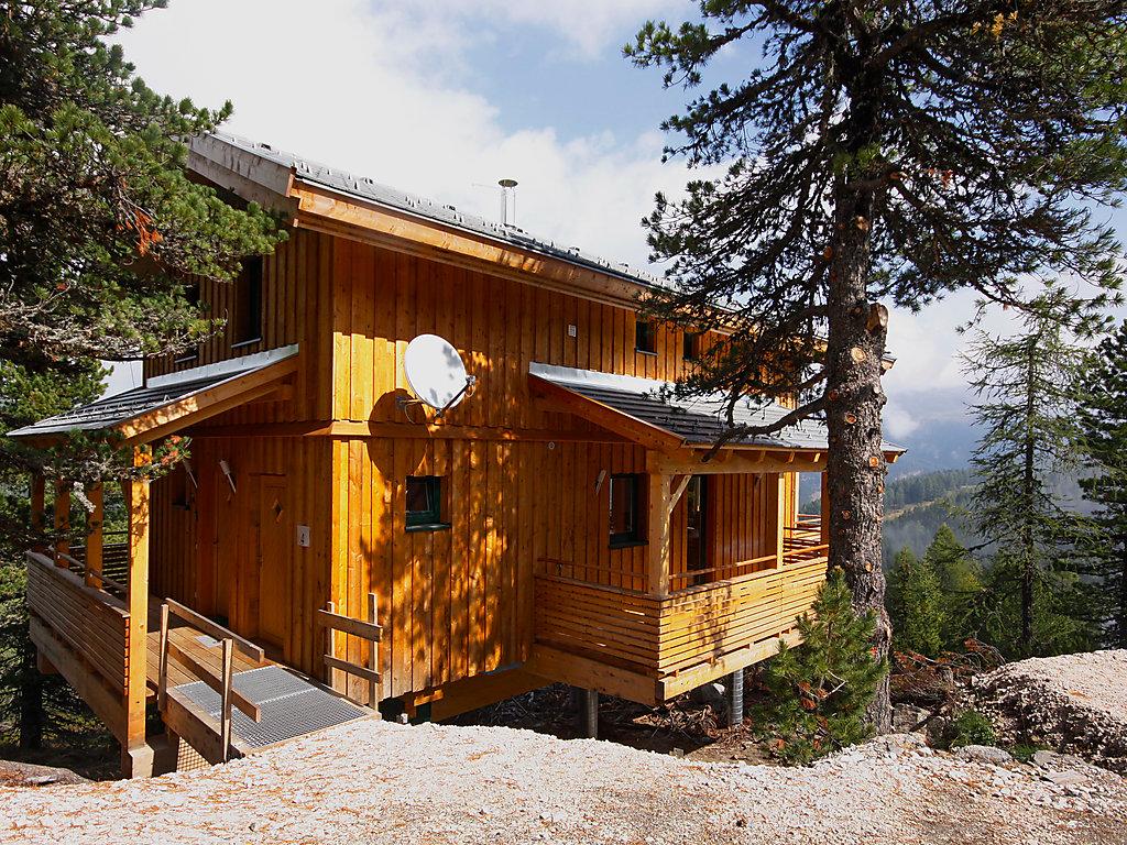 Ferienhaus Alpenpark Turrach Steinalm