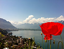 Montreux - Ferienwohnung Flaminia