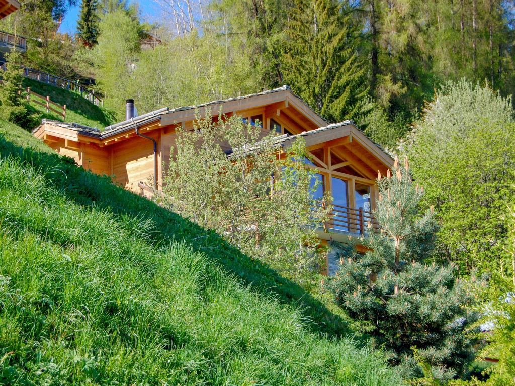 Ferienhaus Chalet Arvine