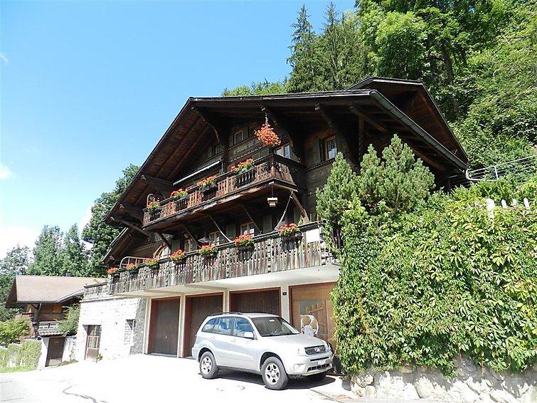 Flüehli - Apartment - Gstaad