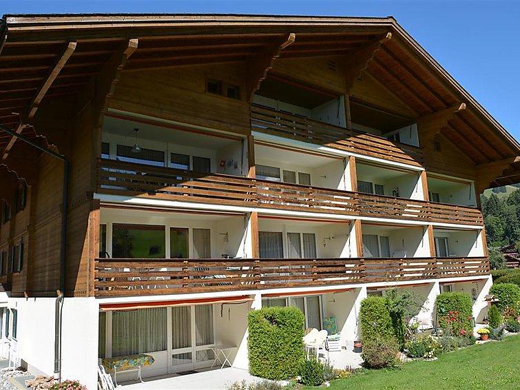 La Sarine 20 - Apartment - Gstaad
