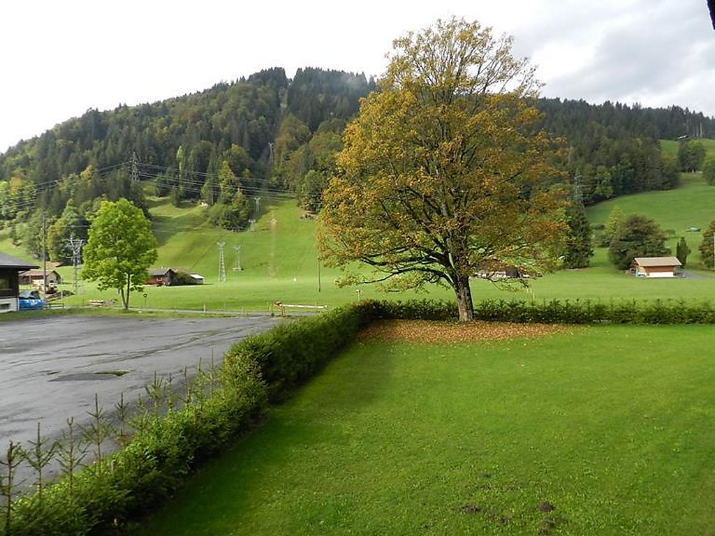 Ferienwohnung Oberland Nr. 8 (neu Oberland Nr. 31)