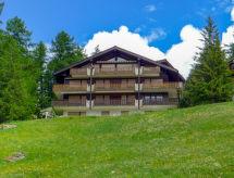 Zermatt - Ferienwohnung Sonnhalde B