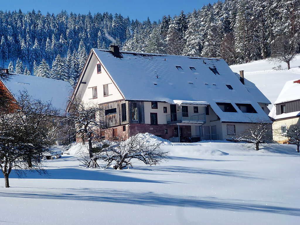 luxus ferienhaus ferienwohnung im schwarzwald buchen. Black Bedroom Furniture Sets. Home Design Ideas