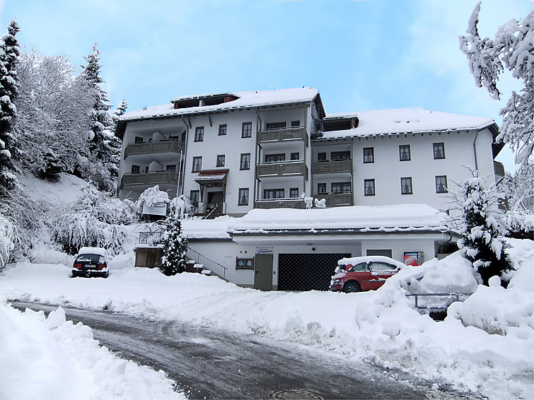 Wintersportapartment (6p) at the tally, with indoor swimmingpool in Todtnau, Zwarte Woud, Residenz Schauinsland (DE7868.651.1 )