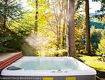 Ferienhaus 19MBR Private Hot Tub!