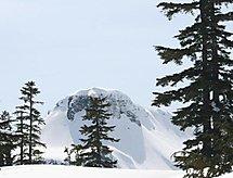 Ferienwohnung 80SW Deluxe Condo near Mt. Baker