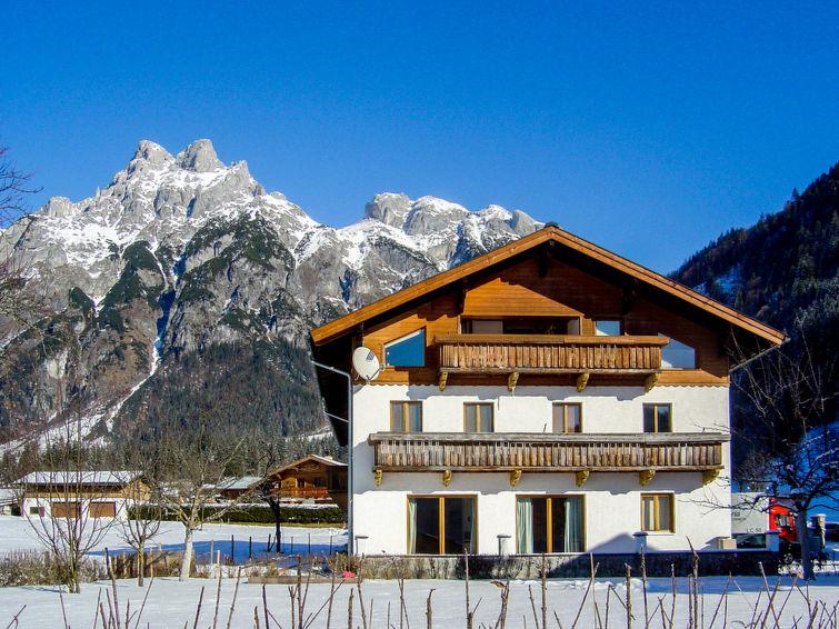 Photo of Edelweiss in Werfenweng - Austria