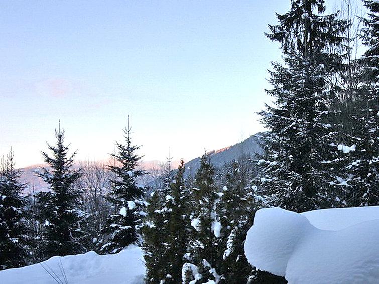 Steindlwald - Chalet - Obertauern