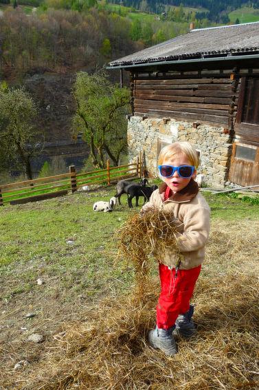 Photo of Achtalgut in Goldegg - Austria
