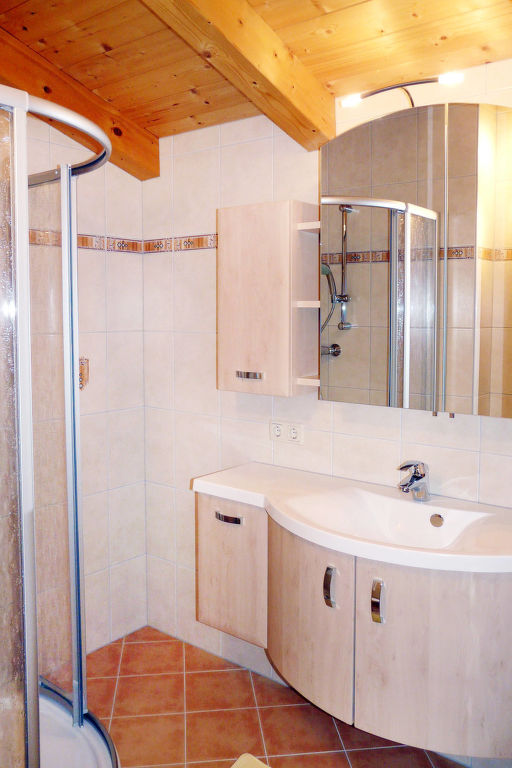 Appartement de vacances (BRG106) (2601515), Taxenbach, Pinzgau, Salzbourg, Autriche, image 6