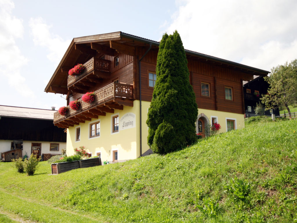 Appartement de vacances Bauernhaus Lippinggut (BRG108) (326598), Taxenbach, Pinzgau, Salzbourg, Autriche, image 10