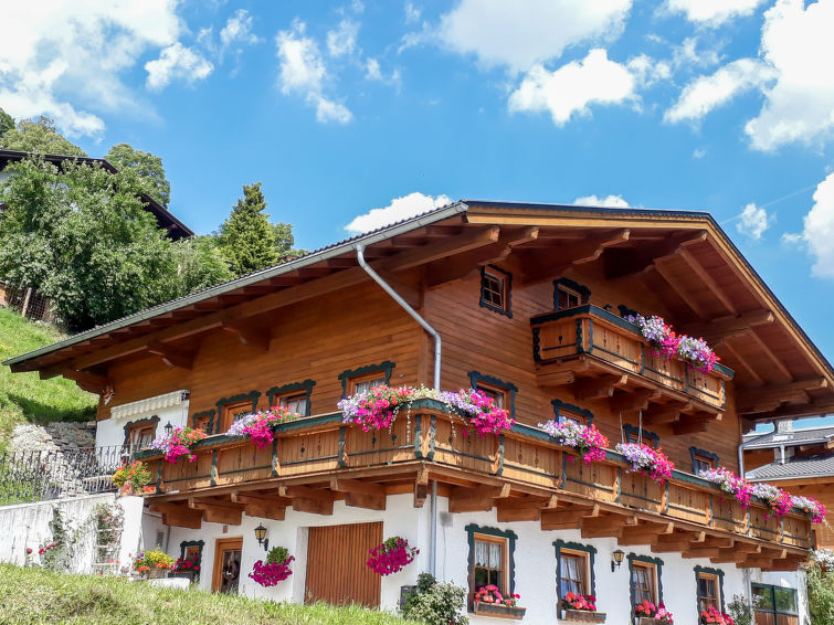 Haus Schneider Apartment in Zell am See - Kaprun