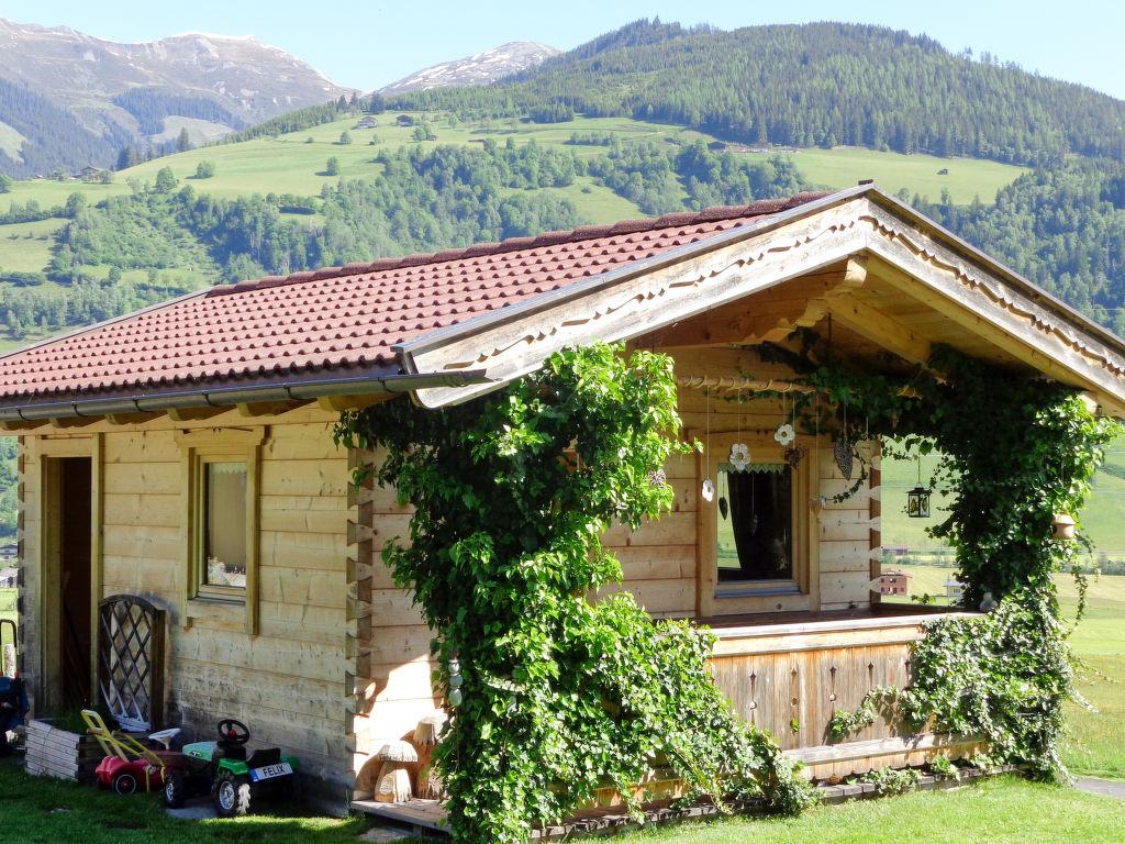 Ferienhaus Erlachhof (NIL100) (749607), Niedernsill, Pinzgau, Salzburg, Österreich, Bild 17