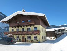Saalbach-Hinterglemm - Appartement Hinterbichl (SAL292)