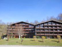 Жилье в Saalfelden am Steinernen Meer - AT5760.300.2