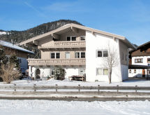 Achensee - Appartement Haus Wellnest (AHS151)