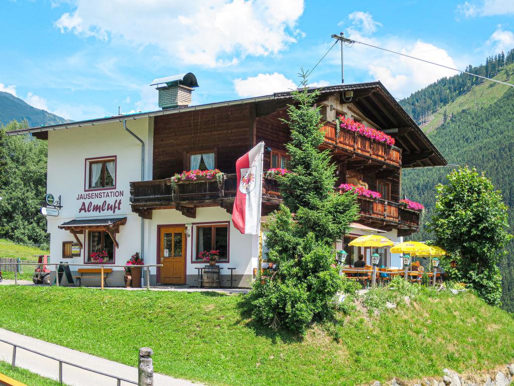 Ferienwohnung Jausenstation Almluft (SUZ274) Ferienwohnung  Tirol