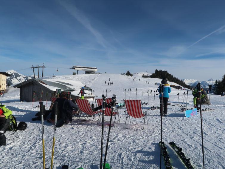 Sollererwirt (WIL450) - Apartment - Ski Juwel Alpbachtal Wildschönau