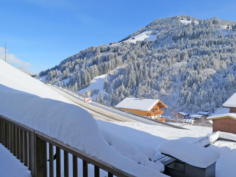 Bergjuwel (WIL552) - Apartment - Ski Juwel Alpbachtal Wildschönau