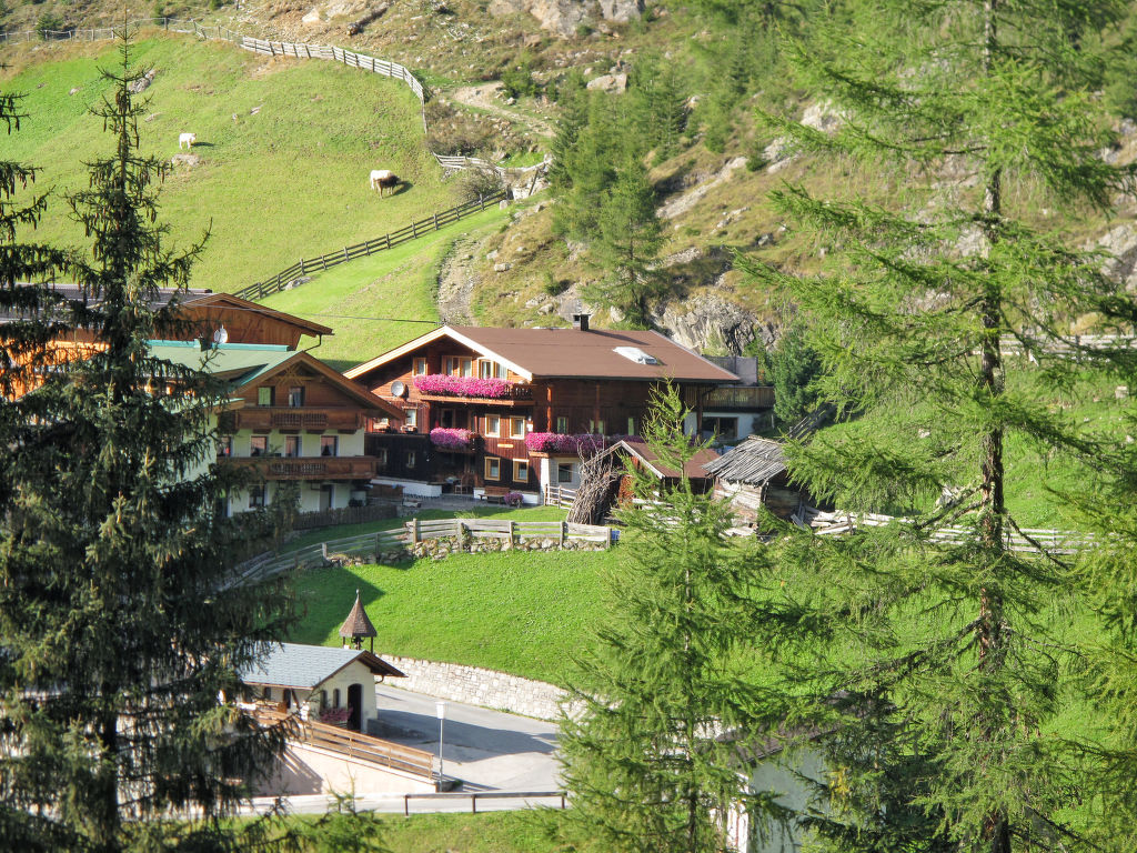 Holiday apartment Winnebachhof (GES140) (553052), Längenfeld, Ötztal, Tyrol, Austria, picture 1