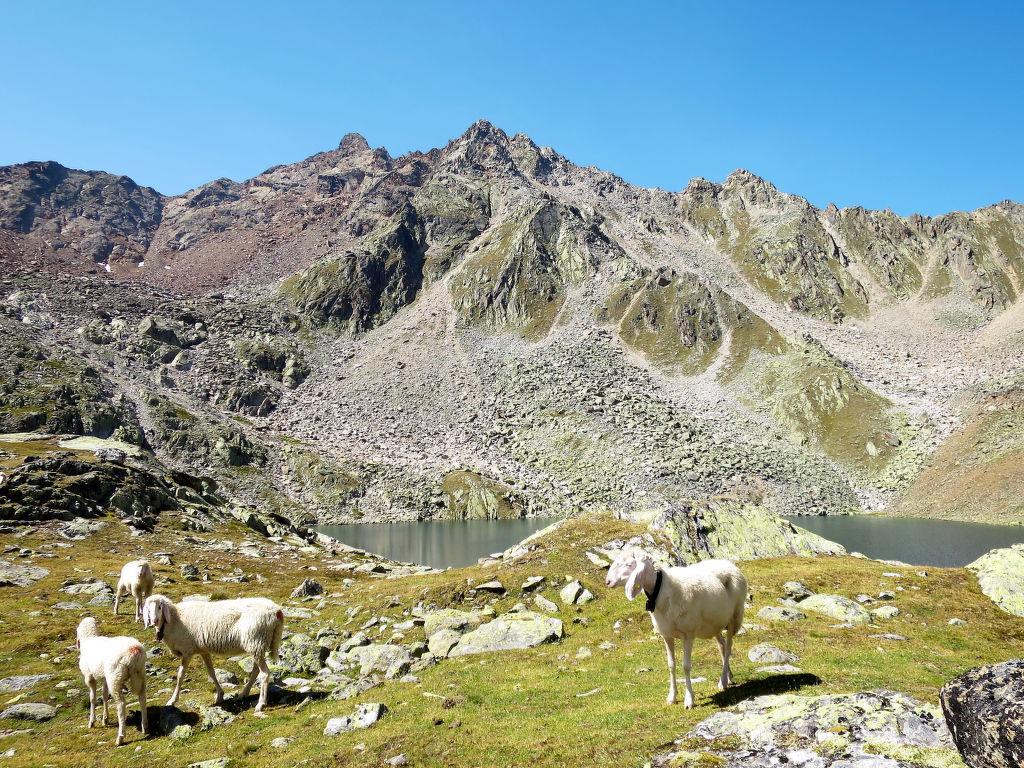Ferienwohnung Nadine (SOE407) (109836), Sölden (AT), Ötztal, Tirol, Österreich, Bild 20