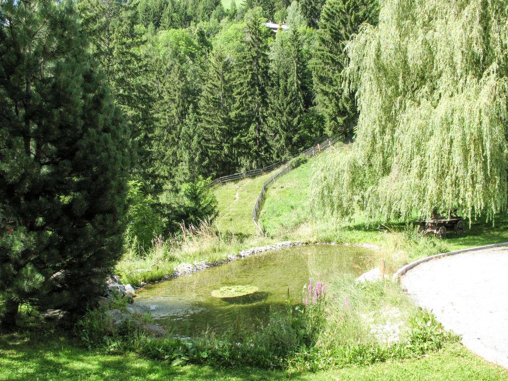 Holiday apartment Burg Biedenegg, Pach (FIE201) (108410), Fließ, Tirol West, Tyrol, Austria, picture 28
