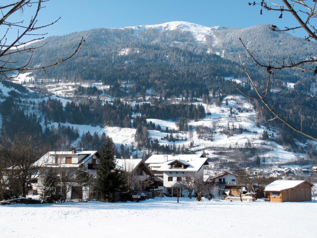 Appartement de vacances Leo (PTZ135) (267257), Prutz, Tiroler Oberland, Tyrol, Autriche, image 30