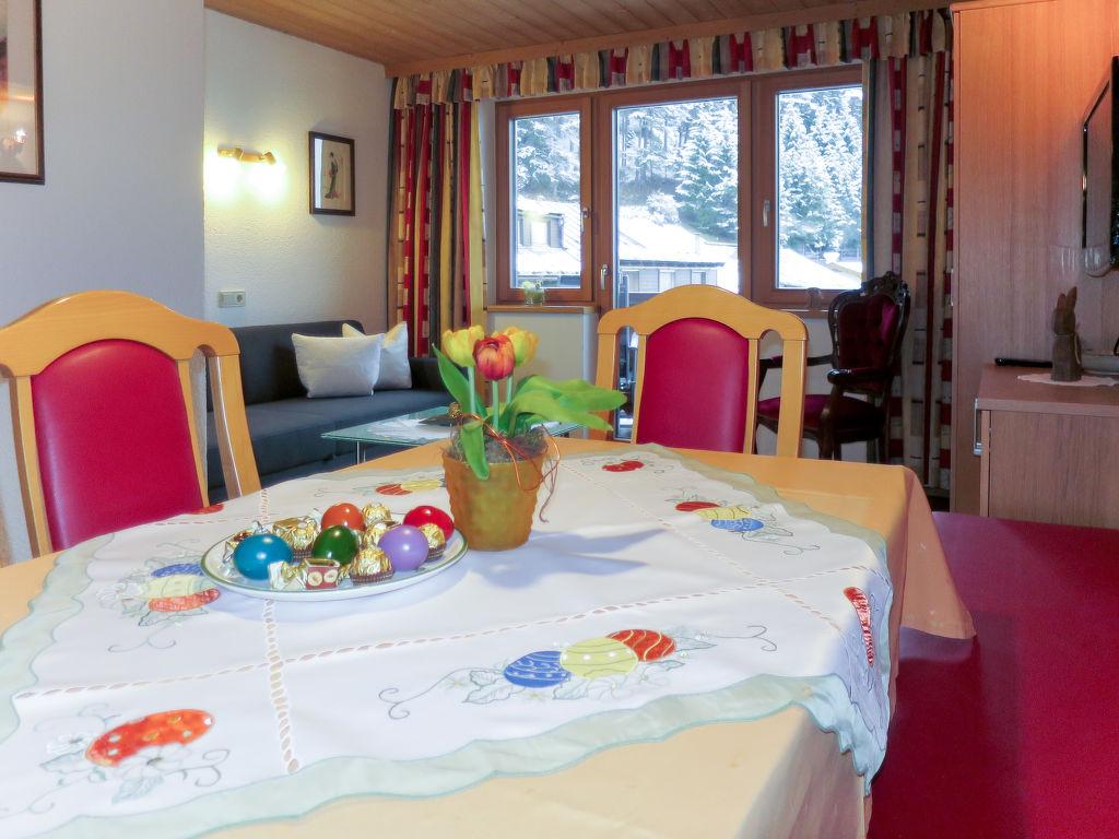 Holiday apartment Am Schönbach (STA153) (106706), St. Anton am Arlberg, St. Anton am Arlberg, Tyrol, Austria, picture 5