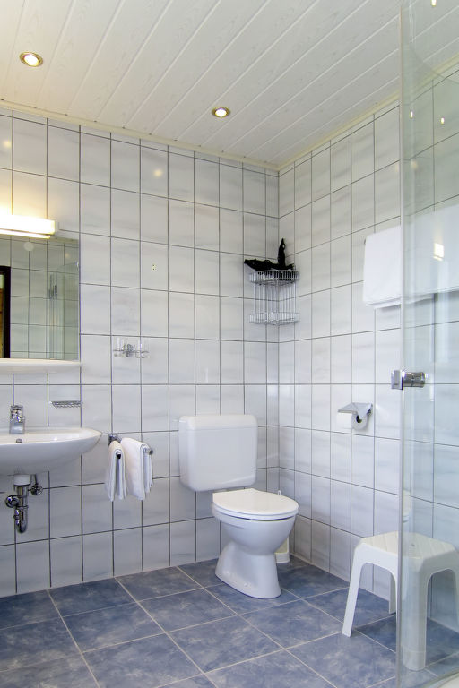 Appartement de vacances Bergkamerad (SLD550) (2632022), Pichl, Schladming-Dachstein, Styrie, Autriche, image 6