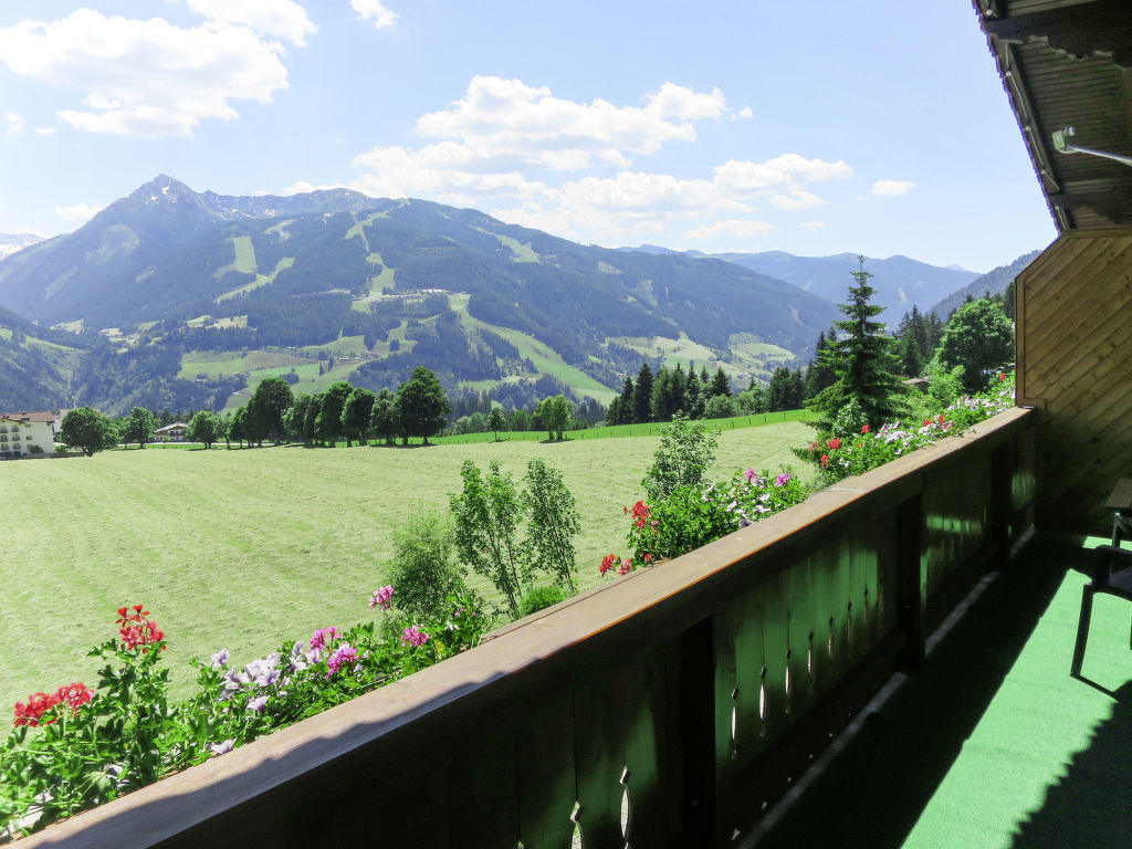 Appartement de vacances Bergkamerad (SLD550) (2632022), Pichl, Schladming-Dachstein, Styrie, Autriche, image 7