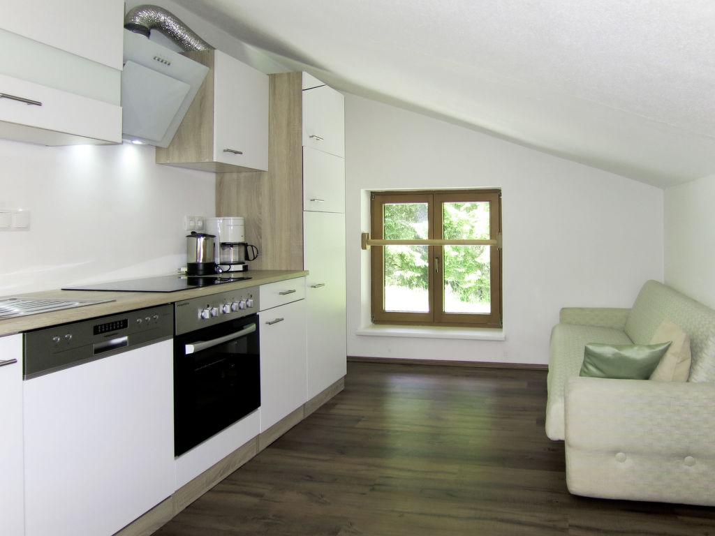 Appartement de vacances Bergkamerad (SLD550) (2632022), Pichl, Schladming-Dachstein, Styrie, Autriche, image 9