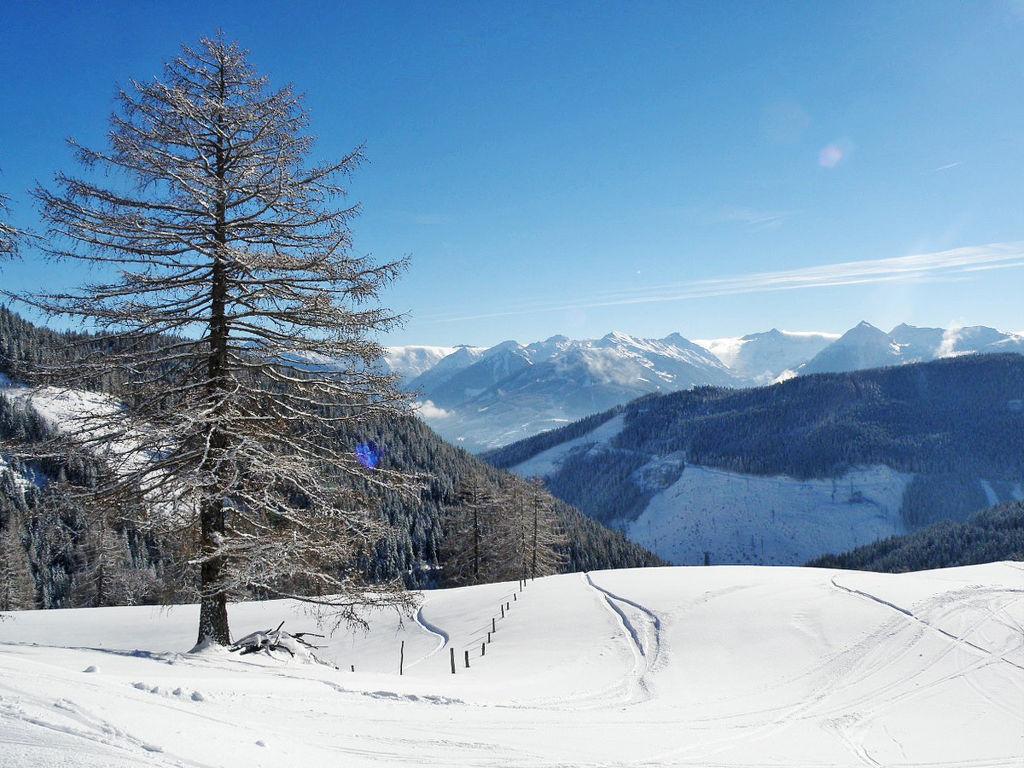 Ferienwohnung Knaushäusl (RMU204) (2591414), Ramsau am Dachstein (Ort), Ramsau am Dachstein, Steiermark, Österreich, Bild 10