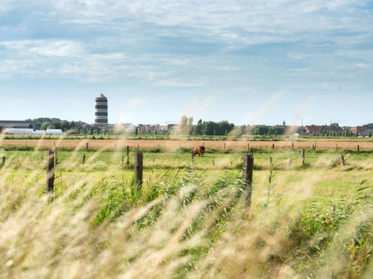 Noordzeepark Zeewind - 13