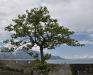 Foto 33 exterieur - Vakantiehuis Duck House, Montreux