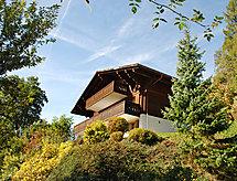 Château d'Oex - Apartamenty Betula