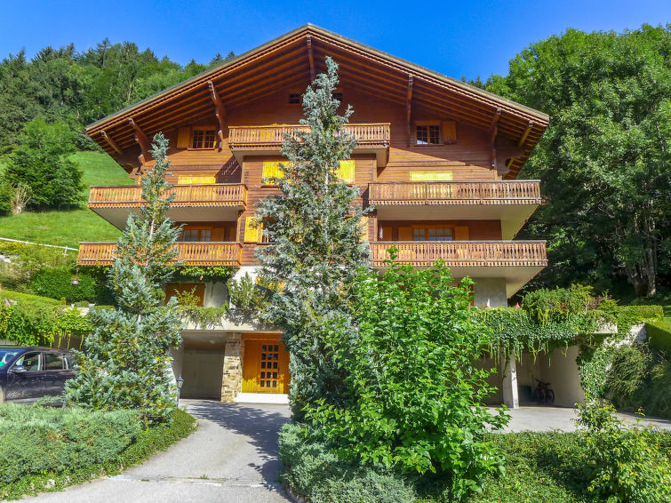 Champery accommodation chalets for rent in Champery apartments to rent in Champery holiday homes to rent in Champery