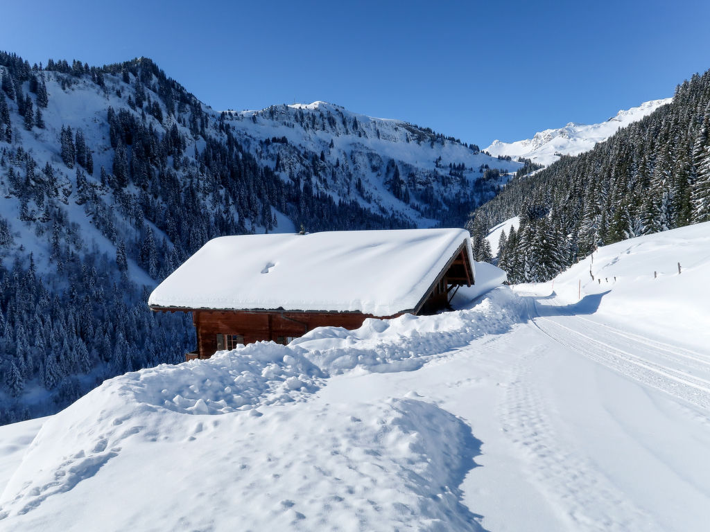Ferienhaus Naulaz (105162), Les Crosets, Val d'Illiez, Wallis, Schweiz, Bild 24