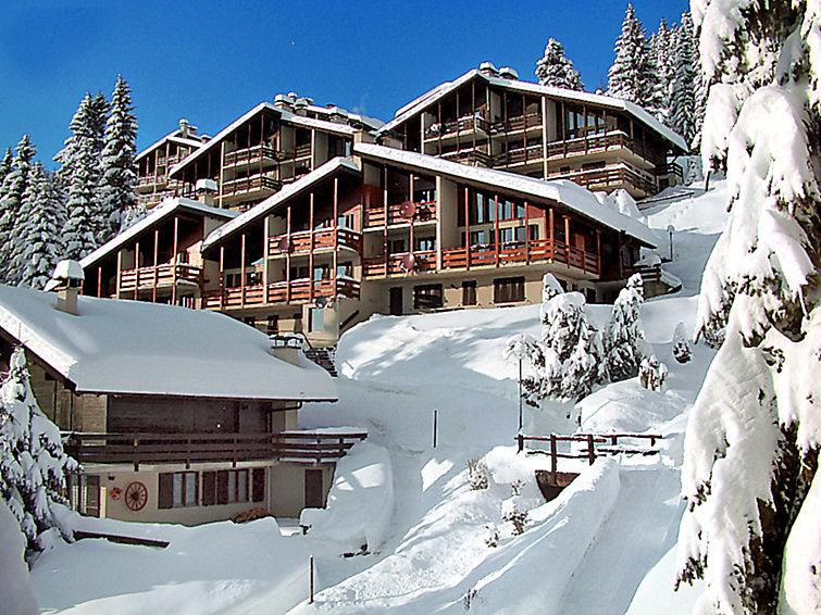 Les Arsets 01/203 - Apartment - Alpe des Chaux