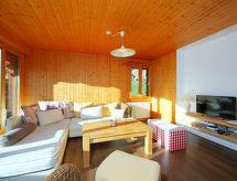 Gryon - Vakantiehuis Chalet Le Hibou