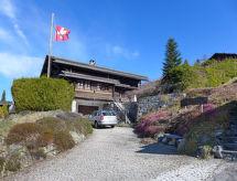 Gryon - Casa de vacaciones Chalet Hallali