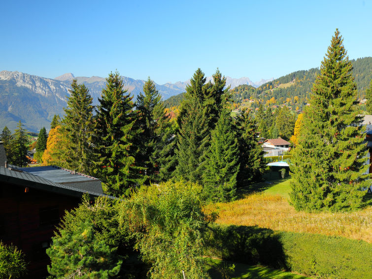 Villars-Gryon accommodation chalets for rent in Villars-Gryon apartments to rent in Villars-Gryon holiday homes to rent in Villars-Gryon