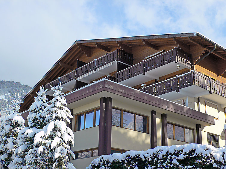 Grand-Pont 15 - Apartment - Villars - Gryon