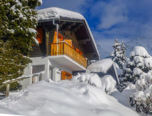 Verbier - Holiday House Biquinou