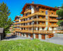 Appartement Les Cimes Blanches B 201, Nendaz, Zomer