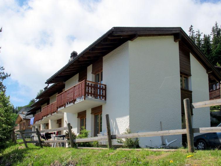 met je hond naar dit vakantiehuis in Thyon-Les Collons
