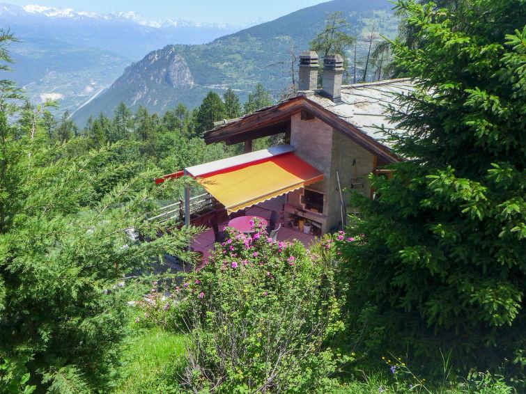 met je hond naar dit vakantiehuis in Les Mayens-de-Sion