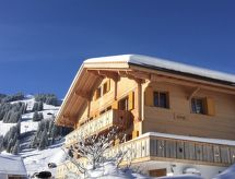 Adelboden - Appartement Butterfly